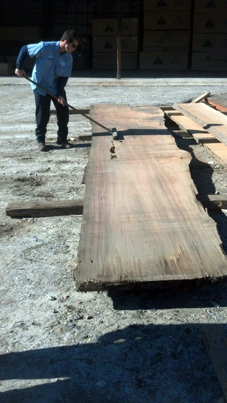 Cypress plank being scrubbed
